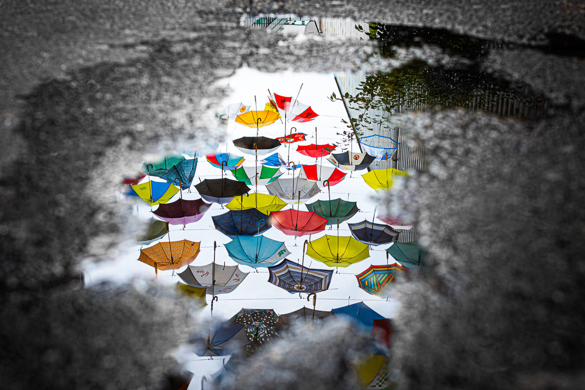 umbrellas in puddle relection zurich