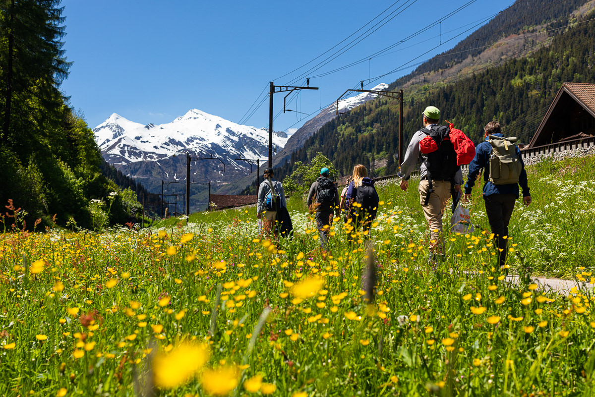 people hiking in swizerland mountains